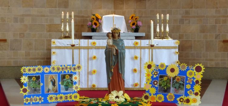 Grow and support your parish